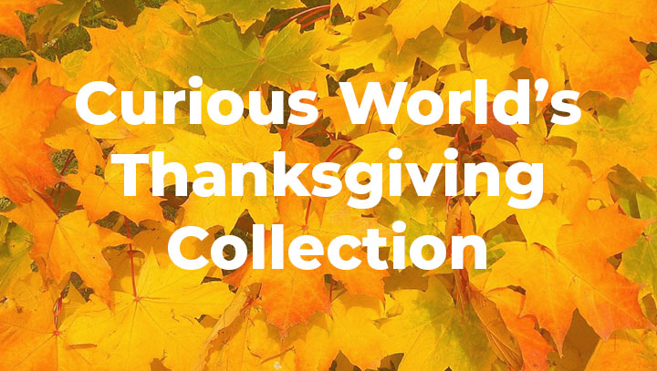 Curious World's Thanksgiving Collection