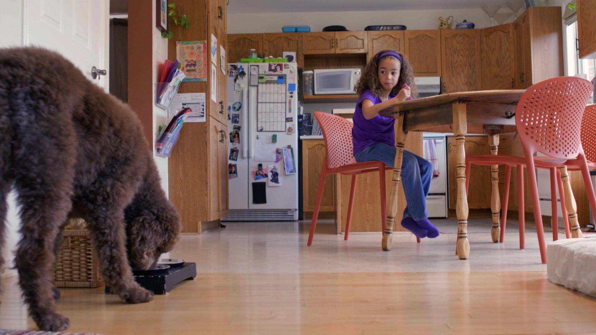 Responsibility for kids - girl feeding dog