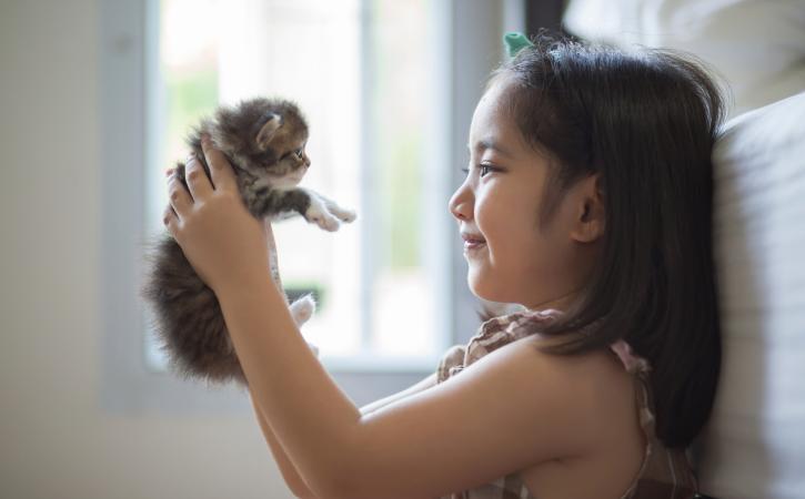 Responsibility for kids - girl holding kitten